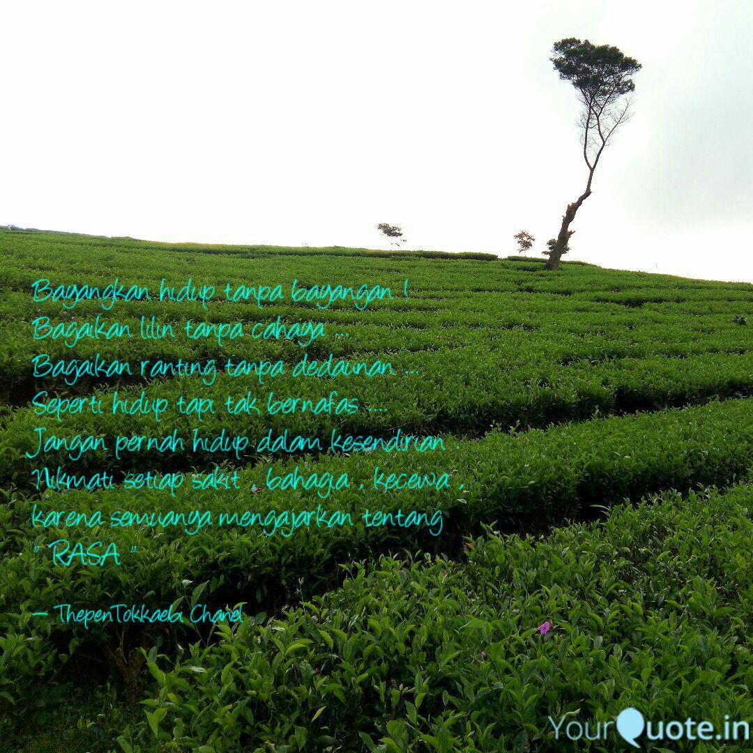 bayangkan hidup tanpa bay quotes writings by thepentokkaebi