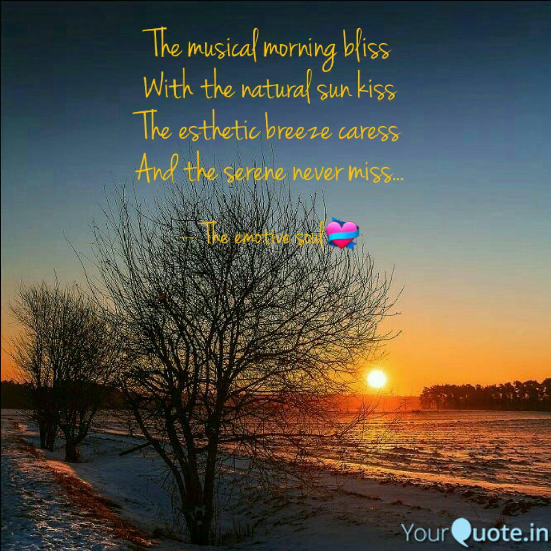 The Musical Morning Bliss Quotes Writings By Anushi Kapoor Yourquote