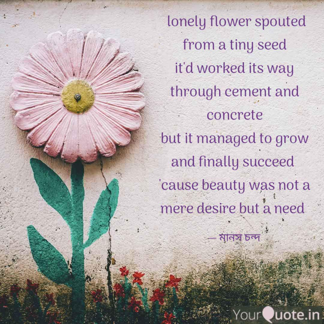 lonely flower spouted fr quotes writings by sunny moony