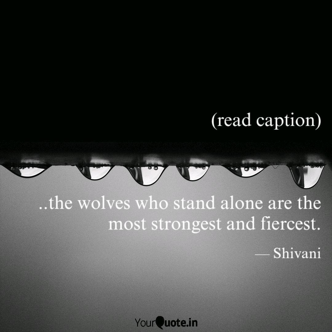 caption the w quotes writings by shivani satpathy