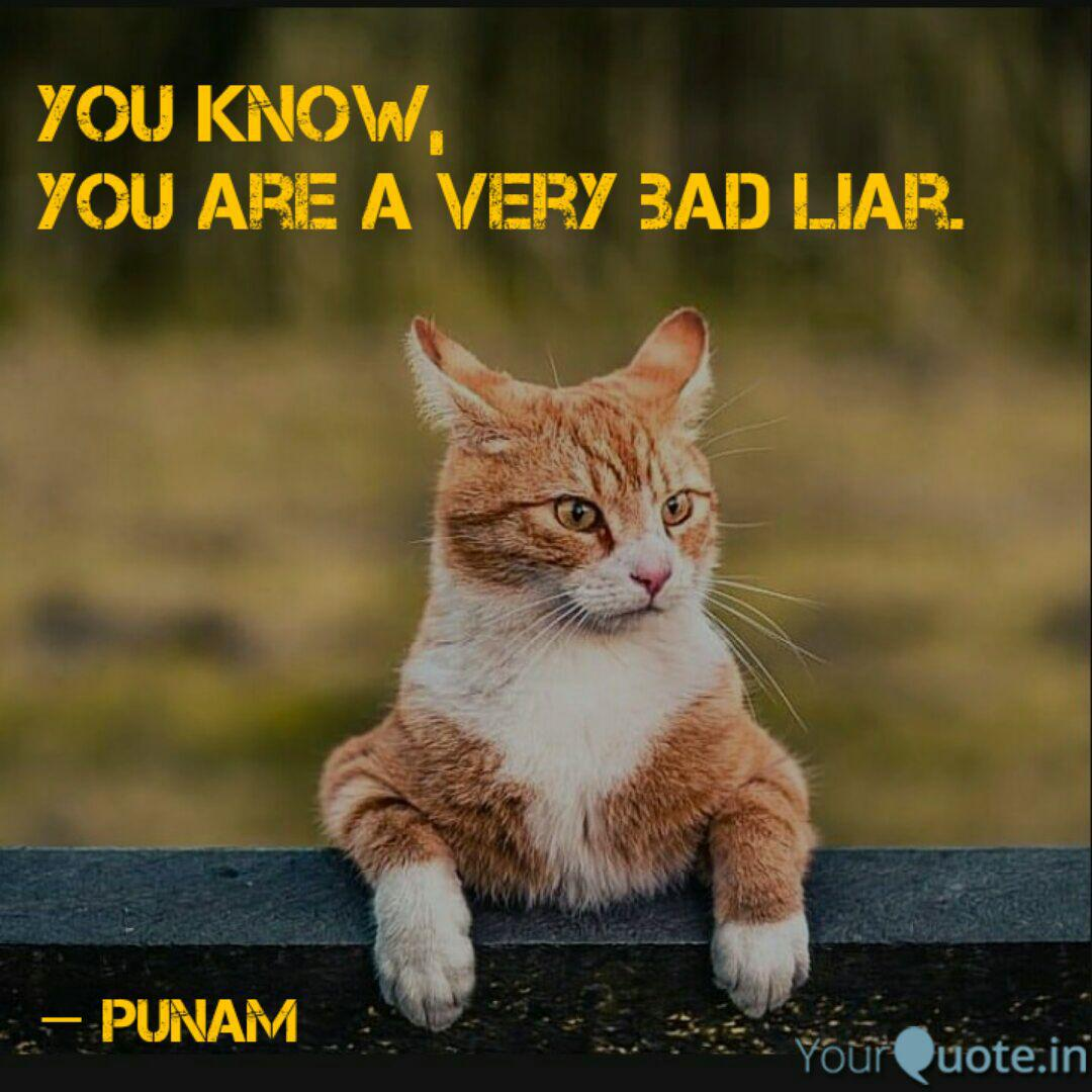 A liar quotes your 51 Lies