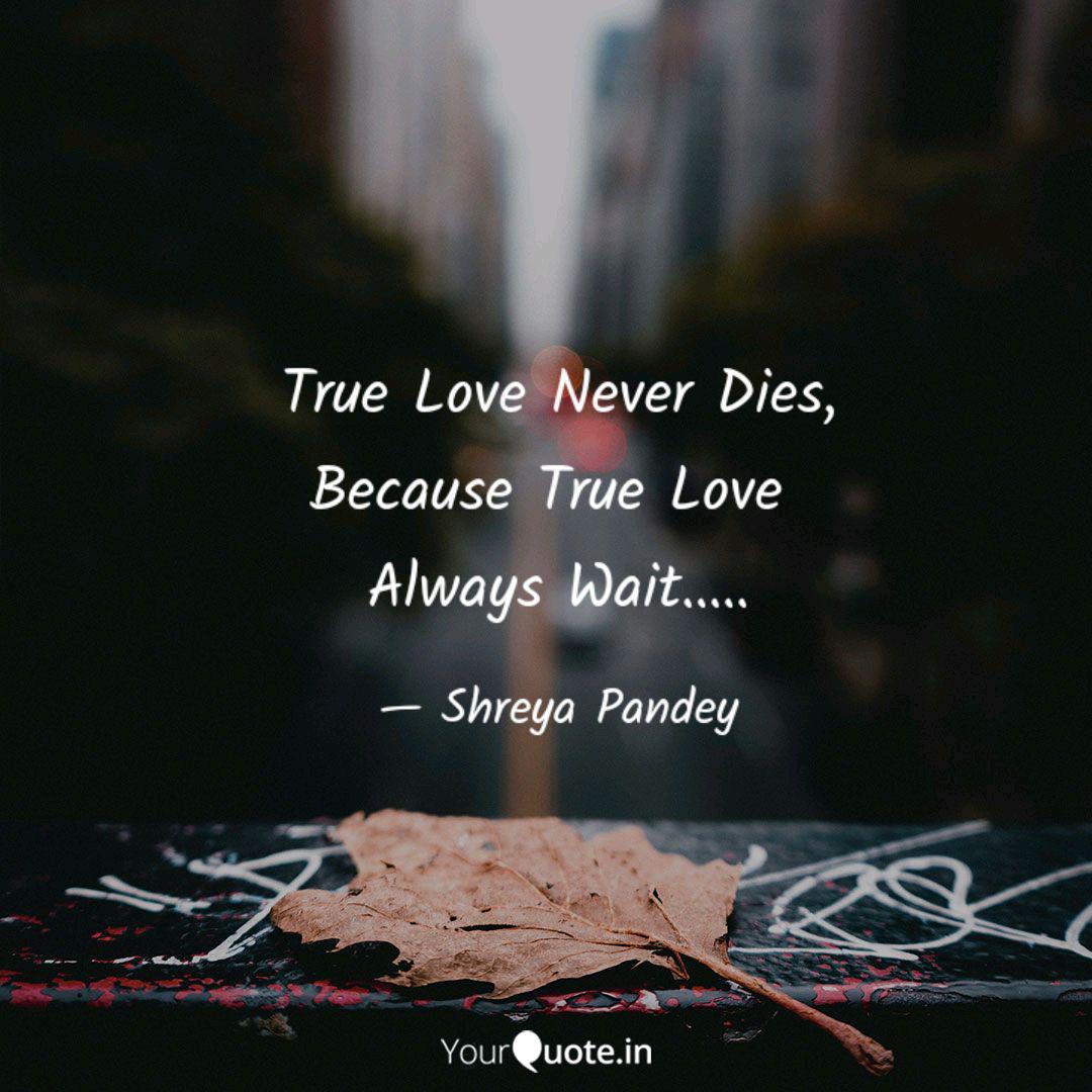 True Love Never Dies, Bec  Quotes & Writings by Shreya Pandey
