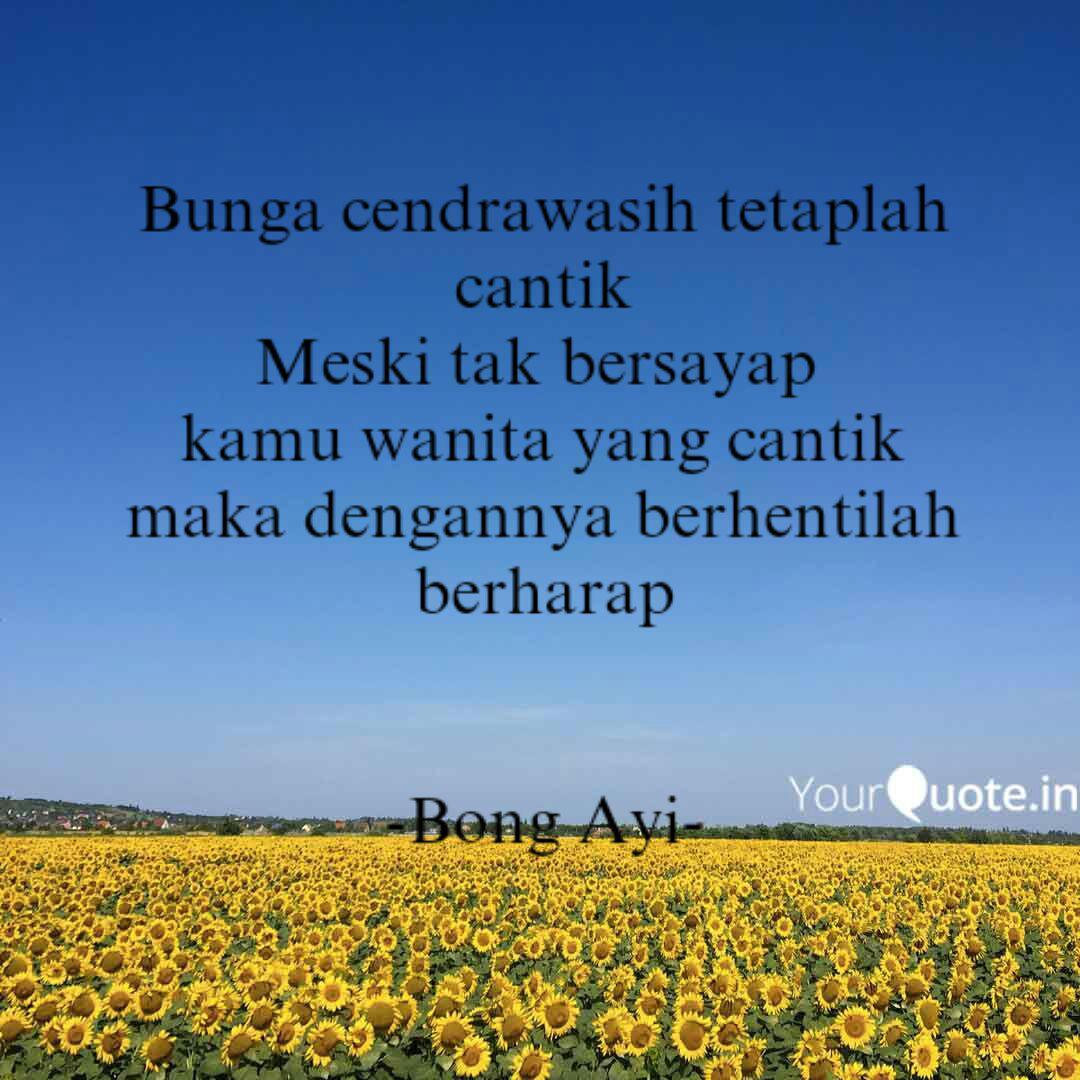 bunga cendrawasih tetapla quotes writings by ardy muh