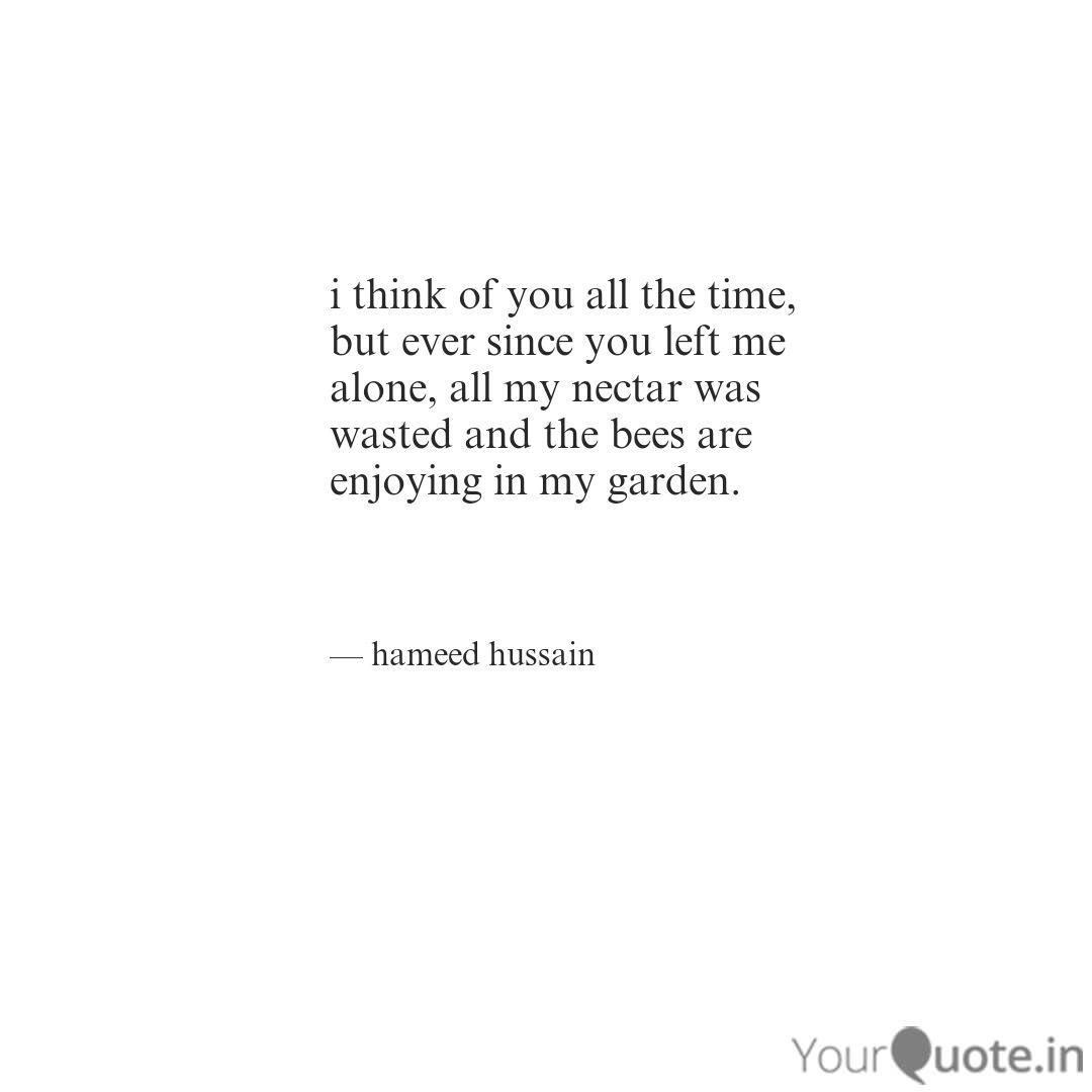 i think of you all the ti... | Quotes & Writings by Hameed ...