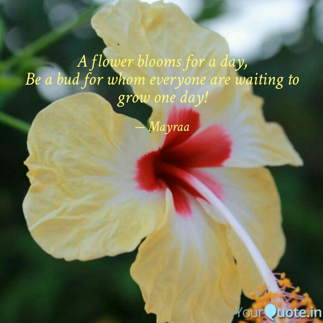 a flower blooms for a day quotes writings by
