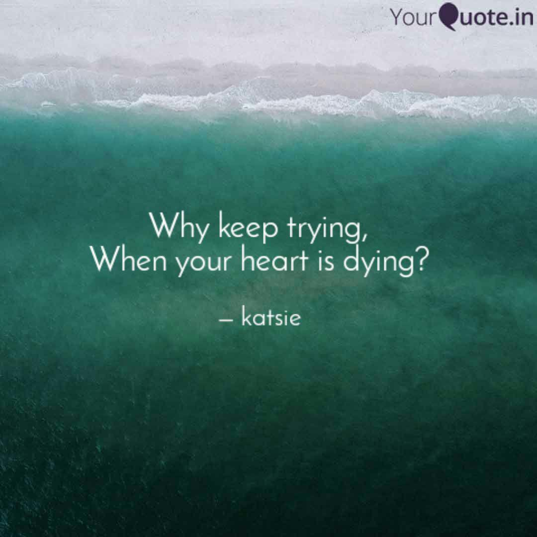 Why Keep Trying When You Quotes Writings By Katelynn Cansler Yourquote
