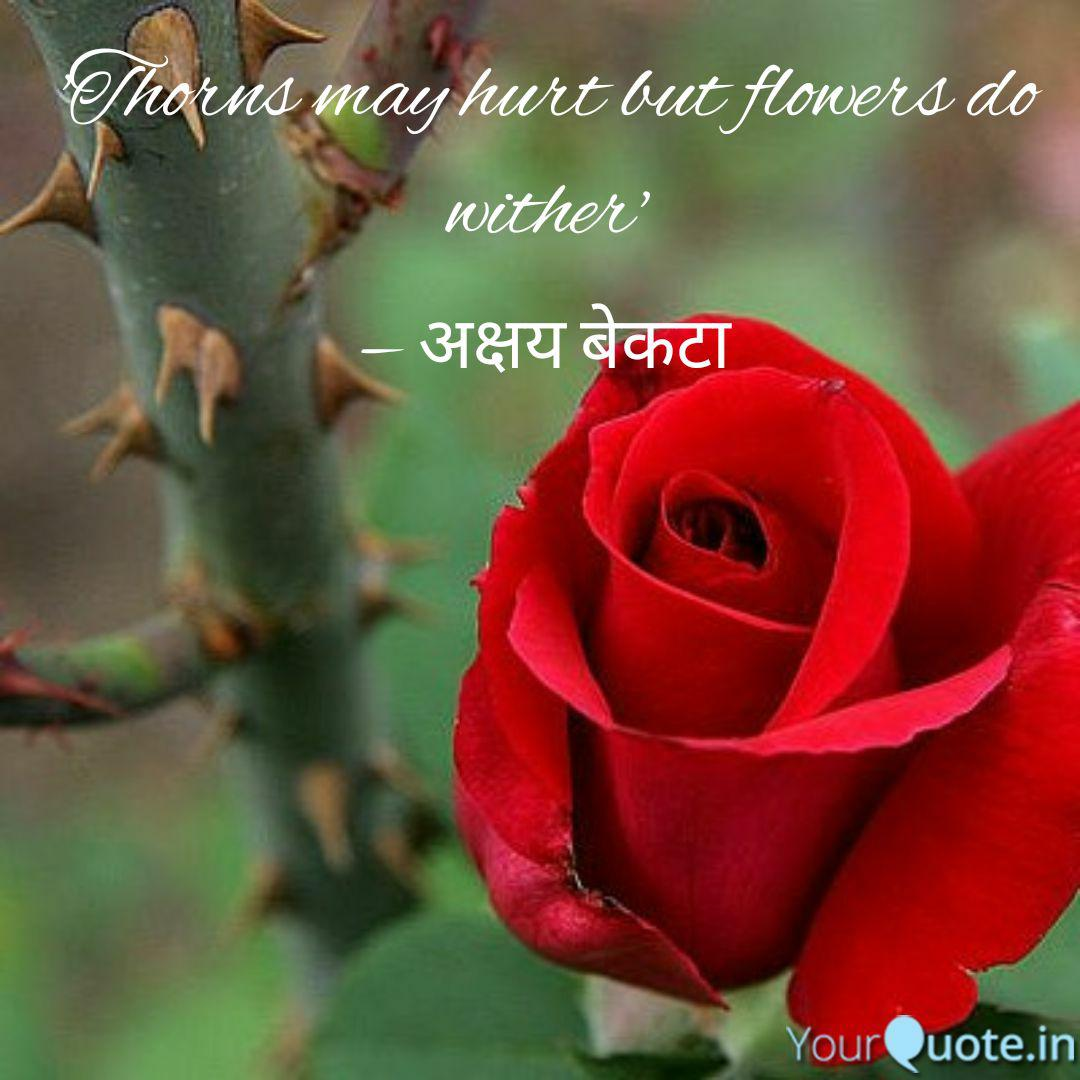 thorns hurt but flow quotes writings by akshay beakta