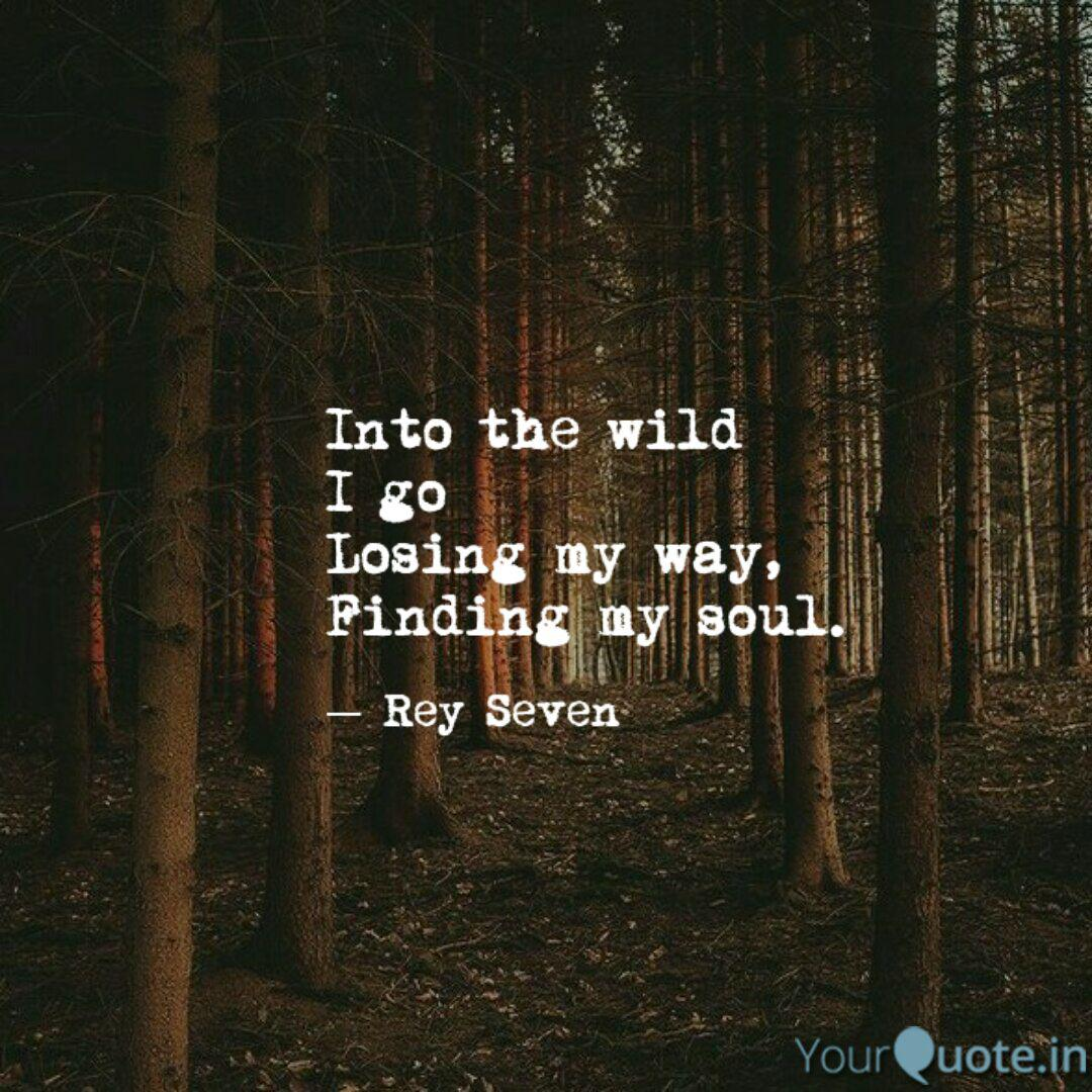 Into the wild I go Losing... | Quotes & Writings by Rey ...