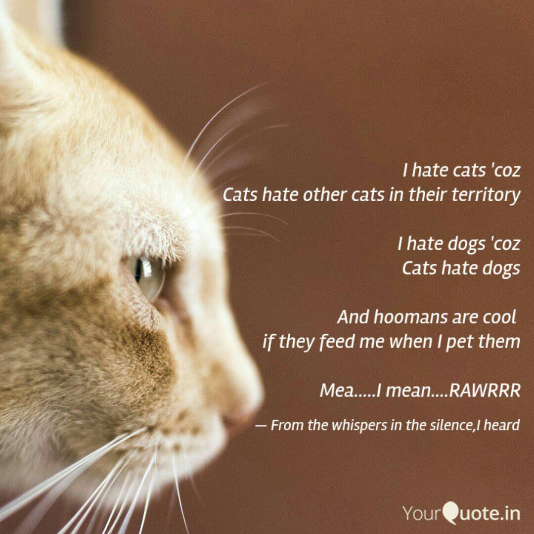 I hate cats \'coz Cats hat... | Quotes & Writings by Jameel ...