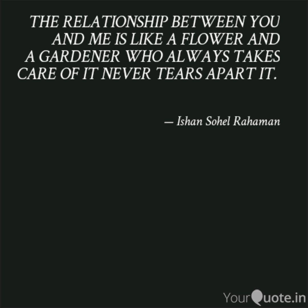 the relationship between quotes writings by ishan sohel