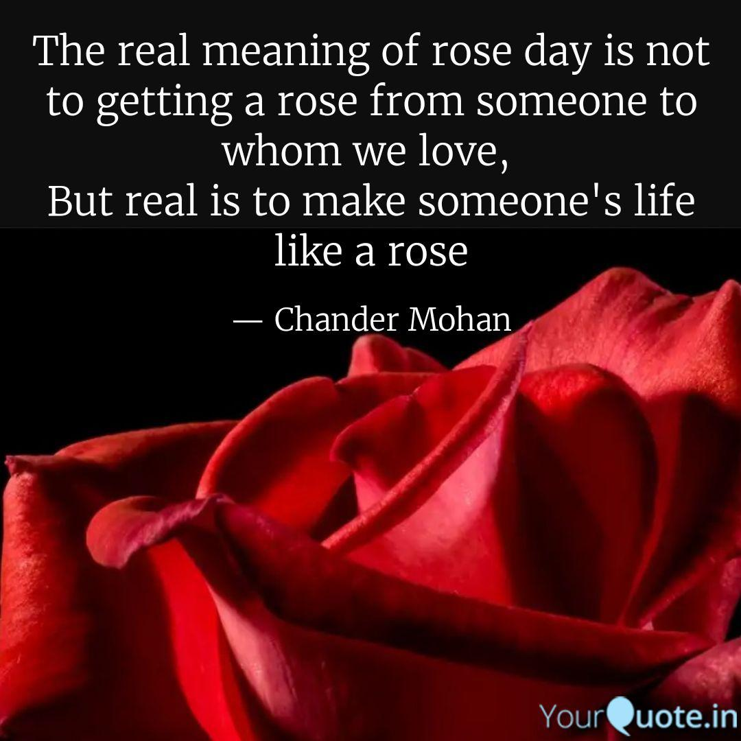 The Real Meaning Of Rose Quotes Writings By Chander Mohan