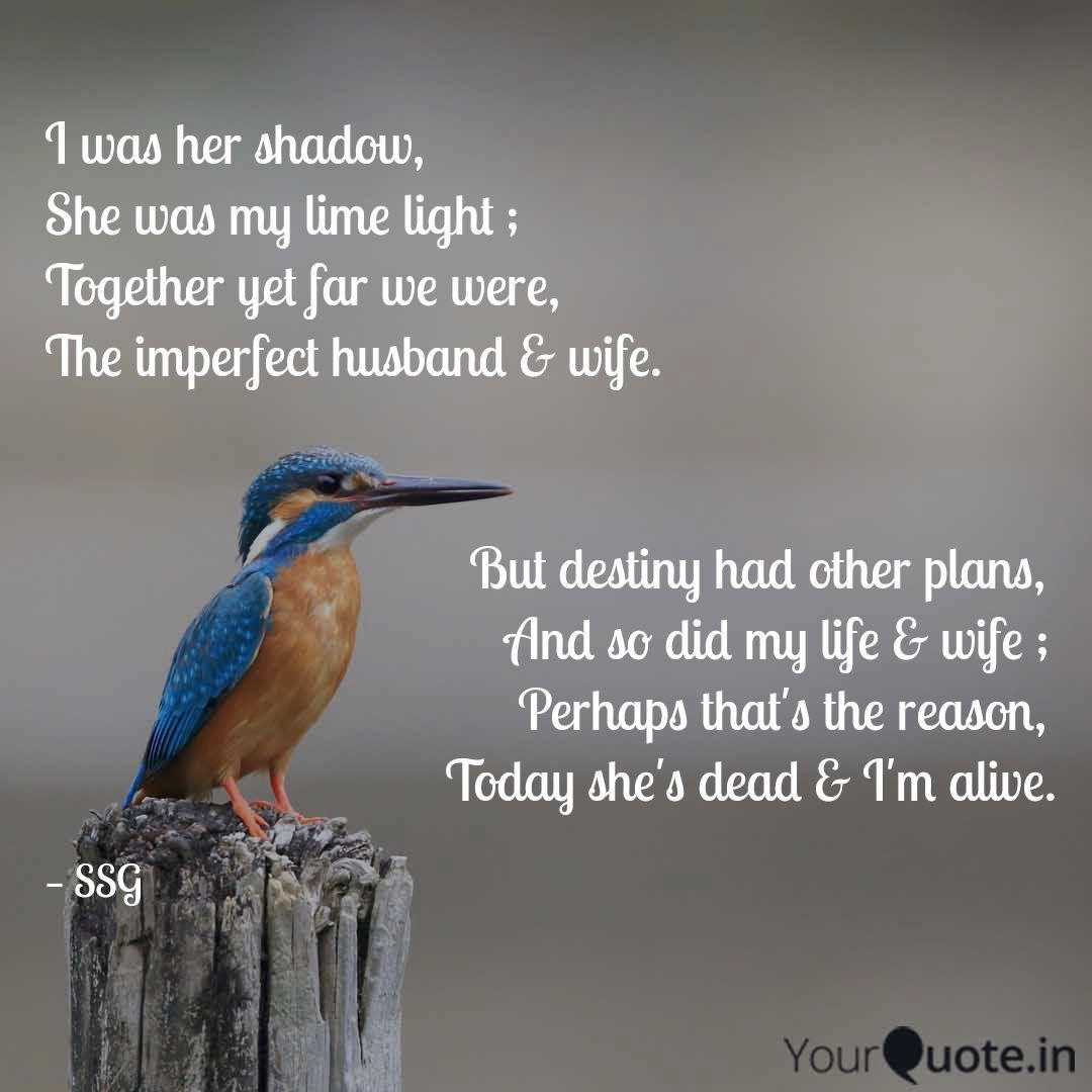 i was her shadow she was quotes writings by subham