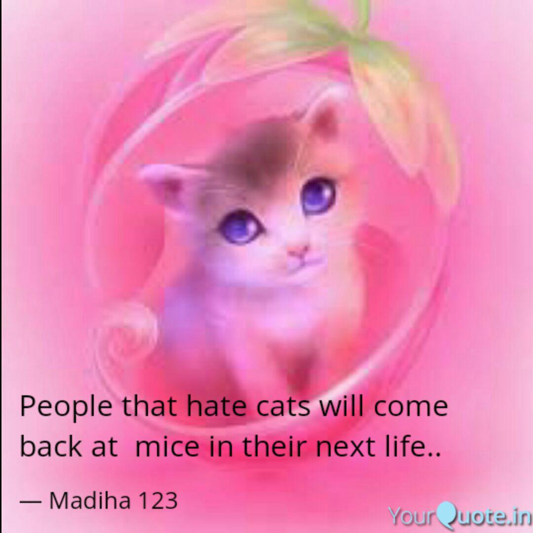People that hate cats wil... | Quotes & Writings by Madiha ...